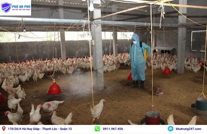 Hướng dẫn cách khử trùng chuồng gà